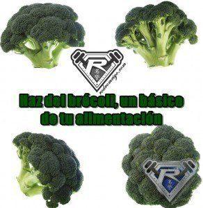 brocoli1final